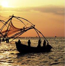 Tour to Kerala