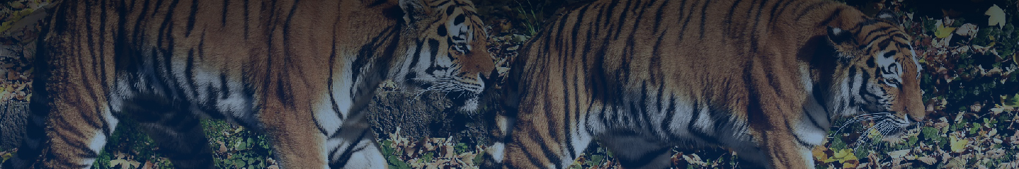 inner Banner Wildlife