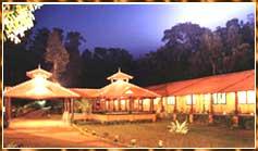 Jungle Park005
